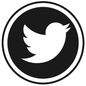 flavor360_twitter